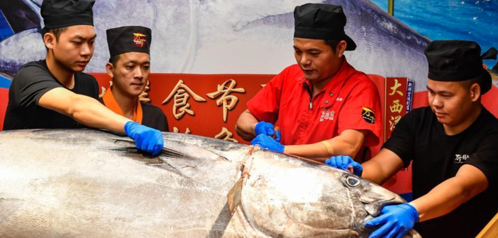 600斤金枪鱼亮相广州亚洲美食节
