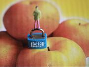 实行食品安全强制责任保险的必要性