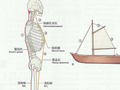 测测你的体态是否标准,对症锻炼(多图)