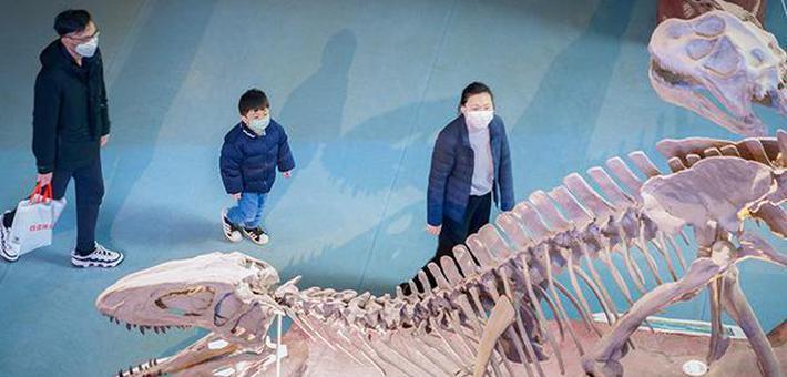 安徽省地质博物馆恢复开放