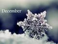 星吧版:12星座12月运势
