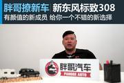 视频:[胖哥撩新车]之新东风标致308