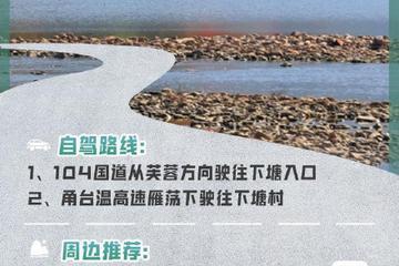 浙江| 十大最美自驾公路带你刷遍绿水青山