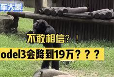 【码车大蒙】14 不敢相信 Model3会降到19万
