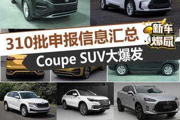 最新博彩娱乐网站大全爆尿:310期申报目录 Coupe SUV大爆发