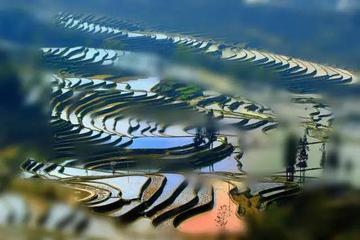 花海、古镇 春天国内最美的自驾游的地方!