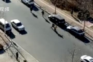 视频:发生口角,车主在妻儿眼前被捅死