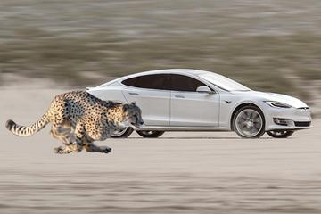 特斯拉最近更新:起步模式增加猎豹姿态 降前悬升后悬