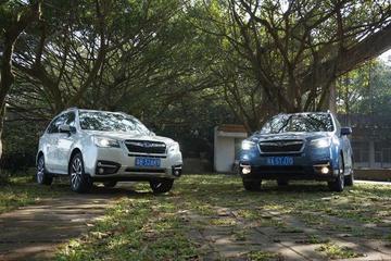 31座森林星之旅收官战 体验斯巴鲁全系SUV