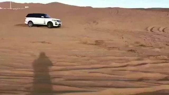 视频:谁说沙漠中的揽胜是只猫?