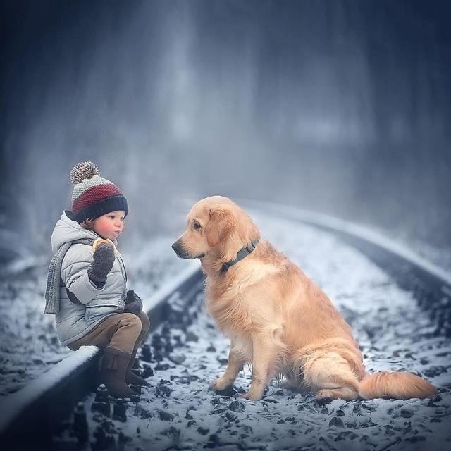 儿童与动物的唯美合影