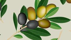 橄榄油就像榨果汁一样