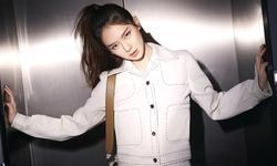 《北京女子图鉴》口碑为何会出现两极分化