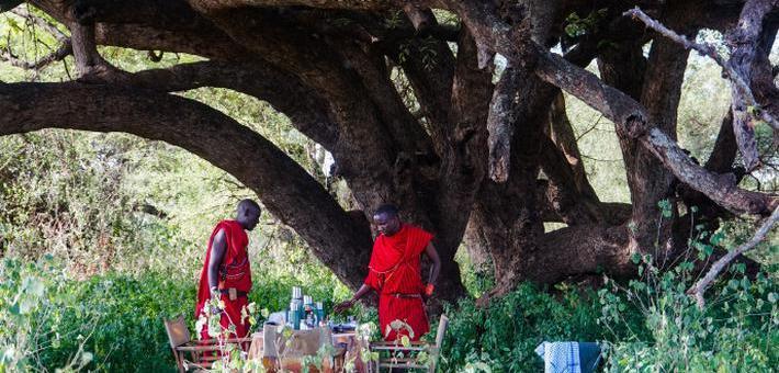在非洲享受一次浪漫的叢林野餐