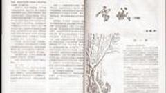 文学·时代 | 他们从《十月》走来系列(4)