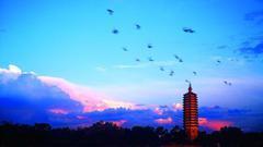 《运河青云梦》:大运河是经济之路 也是中华文明文化之路
