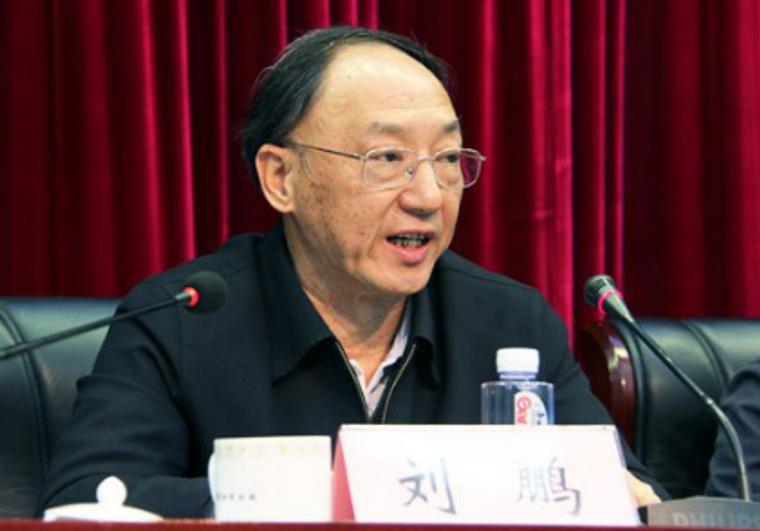 前国家体育局局长刘鹏