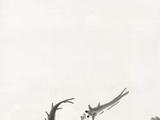 齐白石(1864-1957)  水族群乐