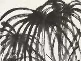 齐白石(1864-1957)  棕榈群雏