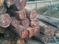 国内红木无货可补 大红酸枝原材消耗殆尽