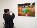 第二届墙报艺术家展在今日美术馆开幕