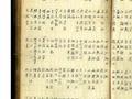 清代御医手稿重现记载500余偏方 估值高达2.1亿
