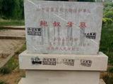 鲍叔牙墓石碑遭小广告侵蚀