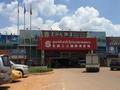 失控的老挝象牙黑市:非法象牙不断进入中国市场