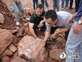 赣州一工地出土恐龙蛋化石