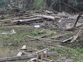 误把柏木当金丝楠木 他深夜拆了别人的老木屋