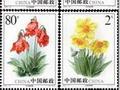 绿绒蒿是中国高山花卉的代表 上了邮票的