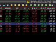 黔中普洱:交易额持续突破新高
