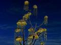印度第二大公共艺术装置亮相古吉拉特邦