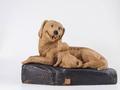生肖藏品前景看好 狗年生肖品提前登场