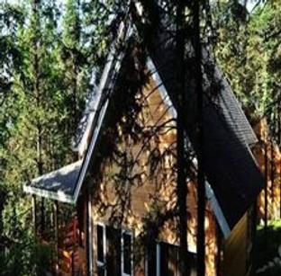盘点重庆这八座森林木屋