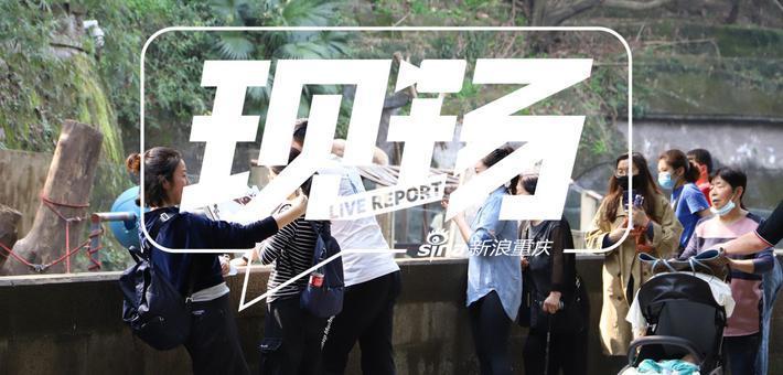 现场:围观重庆动物园开园首日