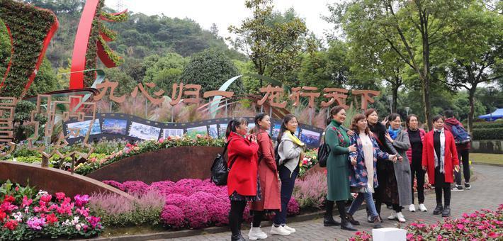 直击花博会 一起来看游客们的花式打卡