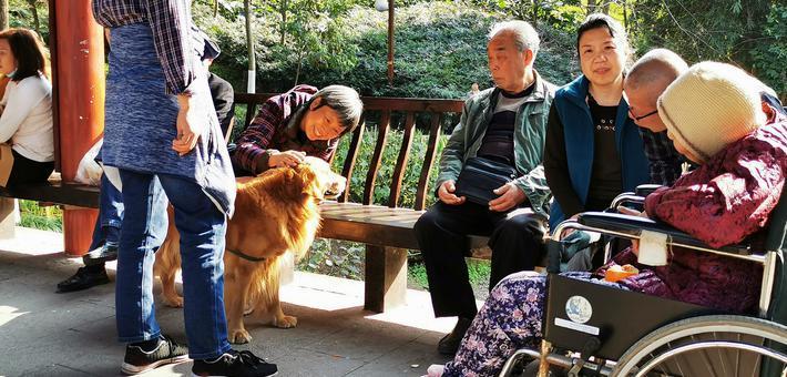 重庆彩云湖公园人气爆棚 市民拍照忙
