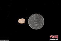 以色列考古人员发现一千年前护身符 造型迷你仅1厘米