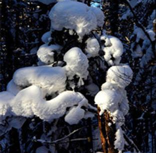 老里克湖荒沟穿越 观赏积雪