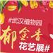 #武汉植物园郁金香花艺展#