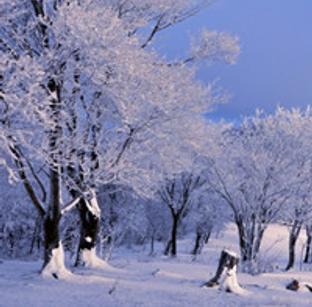冰雪四方山 迎接日出第一缕阳光