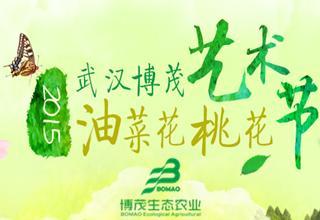 武汉博茂艺术节