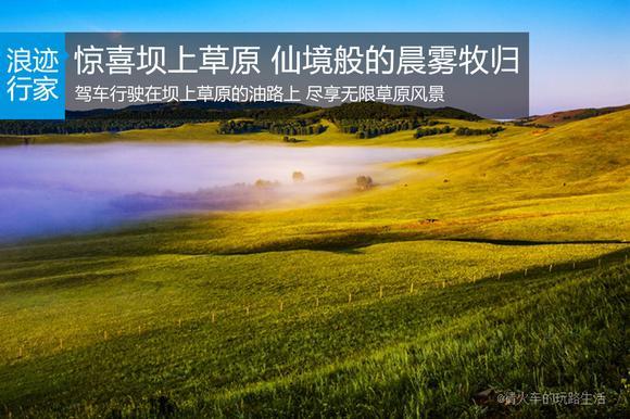 行家:惊喜坝上草原 仙境般的晨雾和牧归