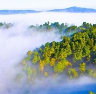 汤旺河奇石地貌林海奇石一日游