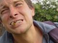 跟贝尔吃虫子的明星胃还好吗