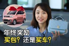 V选好车|10万以内代步新能源该怎么选 五菱宏光Mini EV