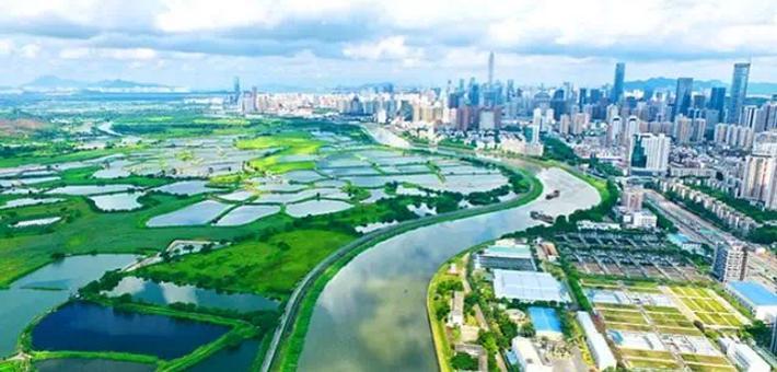踏青赏水 美在深圳 带你看遍深圳的江川河流