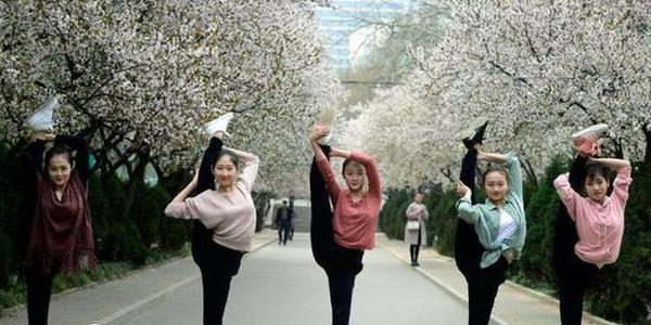 高校舞蹈系女生花海起舞