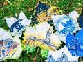 落叶玩出新花样 大学生绘制校园美景树叶画(图)